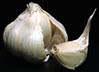 garlic for natural pest control